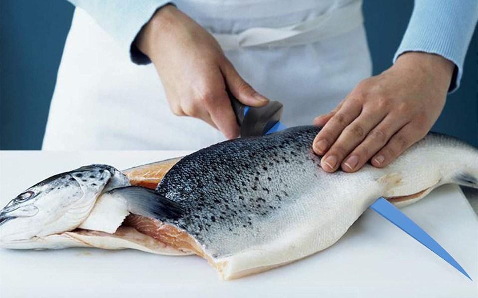 Calamus Fishing Fillet Knife