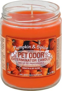 Pet Odor Exterminator Candle