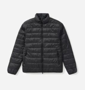 Everlane Black Puffer Jacket