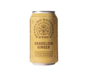 Sparkling Botanicals Dandelion Ginger by Rishi, Best Hangover Cures