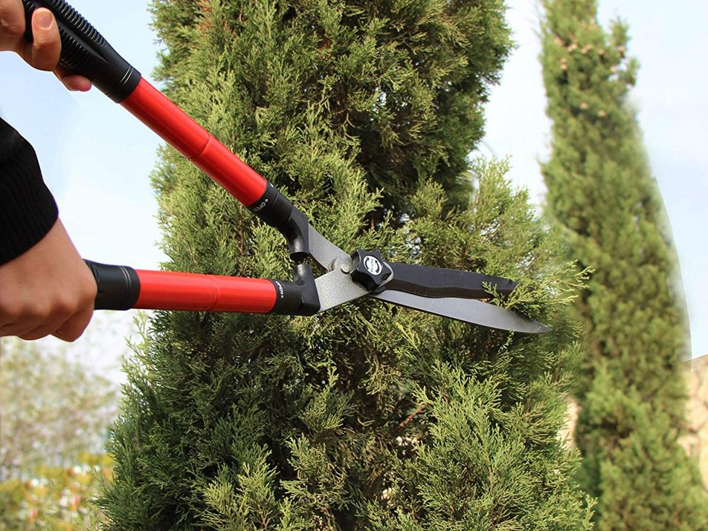 Best Garden Shears 2019: Pruning Bypass Shears, Hedge Shears | SPY