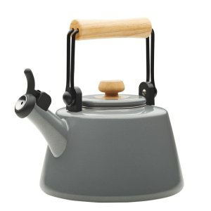 best tea kettle rachel ray
