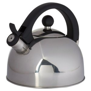 best tea kettle wayfair basics