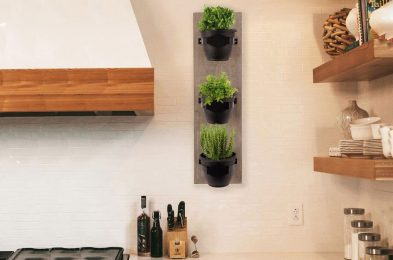 no green thumb? That's no problem with these self-watering pots