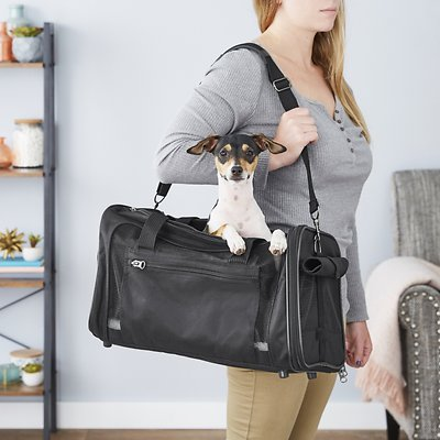 Frisco Dog and Cat Carrier, best dog carriers