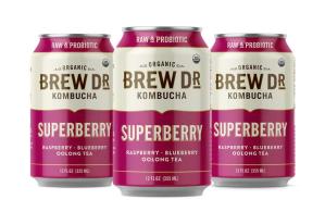 best kombucha brands brew dr