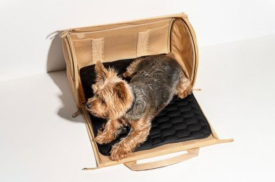 thanks to these dog carrier bags, fido can go on vacation, too
