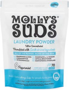 best laundry detergent mollys