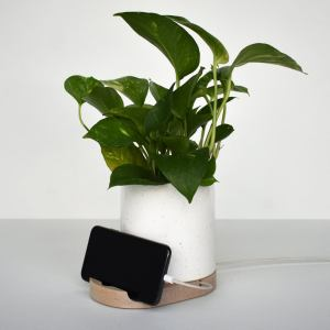 unique mother's day gifts stak foster phone planter dock