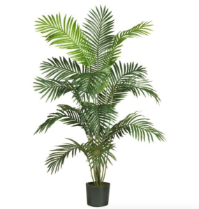 best indoor plants nearly natural