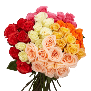 flower delivery online assorted color roses mix colors global rose