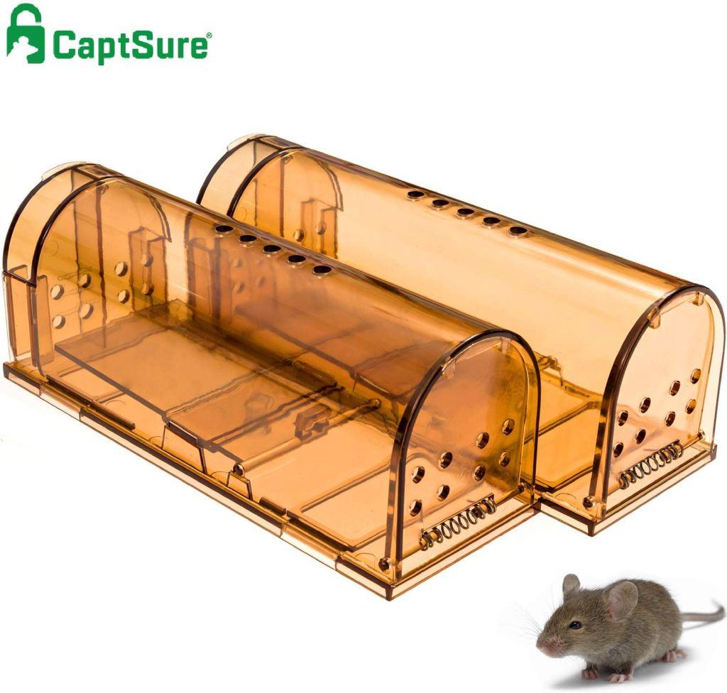 captsure mouse traps