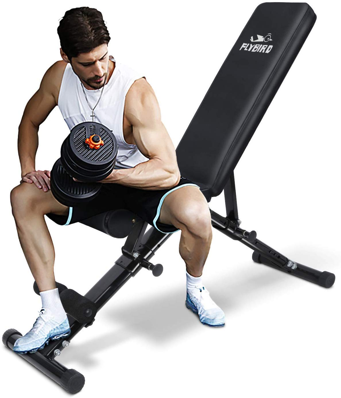 flybird workout bench