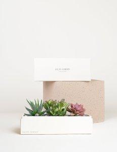 flower delivery online jewel garden lulas garden