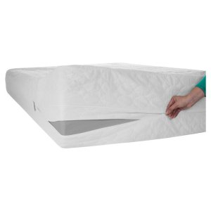 best bed bug mattress covers remedy