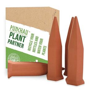 Terracotta Plant Waterer