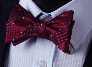 BIYINI Mens Bow Tie