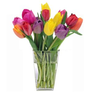 best online flower delivery - Stargazer Barn Confetti Bouquet - 15 Stems of Colorful Tulips with Vase