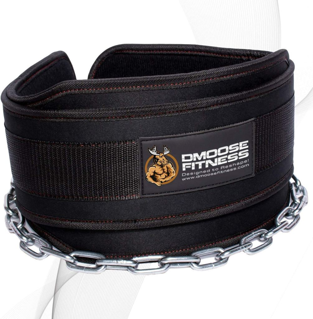 dmoose weight lifting dip belt