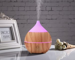 PriBuy Aromatherapy Essential Oil Diffuser with Bluetooth Speaker,