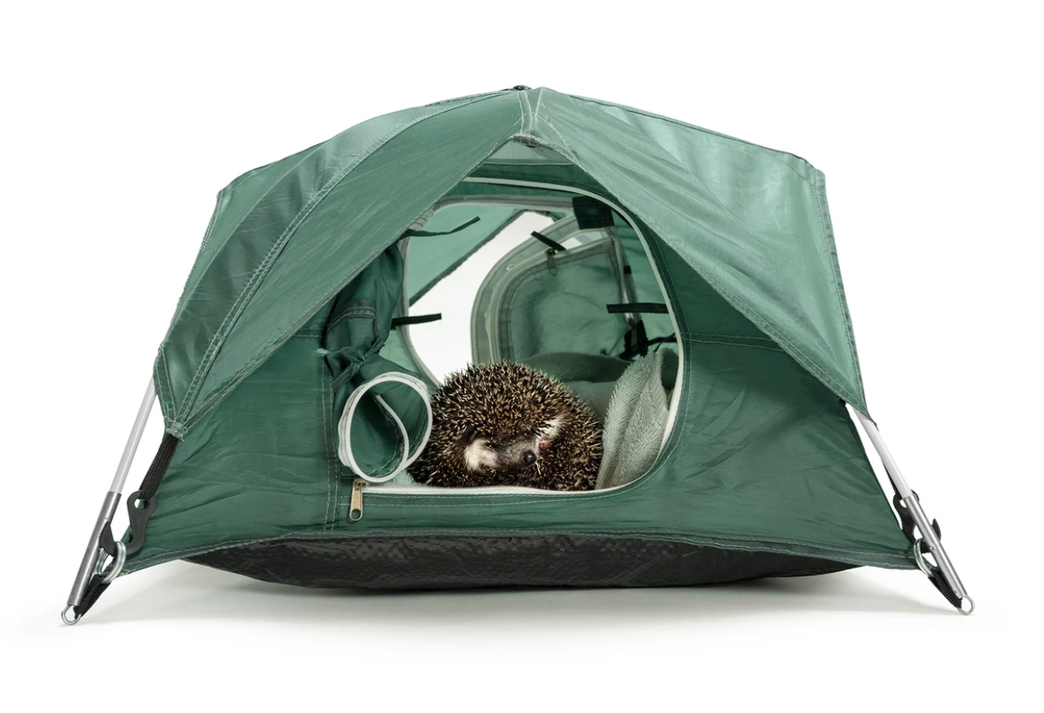 Tiny Tents 1