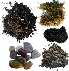TerraGreen Creations Succulent Planter Soil Kit