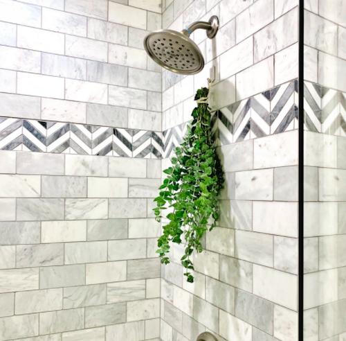 eucalyptus shower bundle