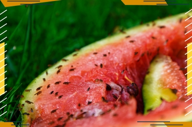 watermelon with fruit flies