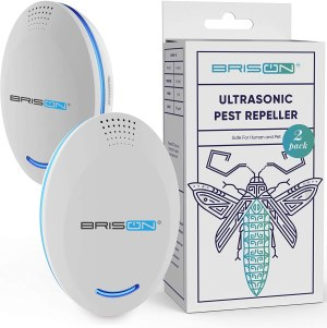 how to get rid of fruit flies brison ultrasonic pest repeller plug in
