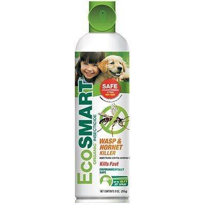 EcoSmart Wasp & Hornet Killer
