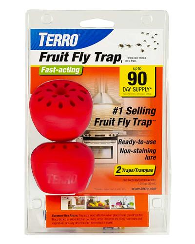 fruit-fly-trap