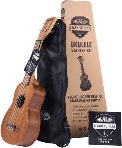 best guitars for beginners ukulele