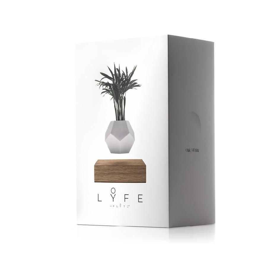 LYFE levitating plant