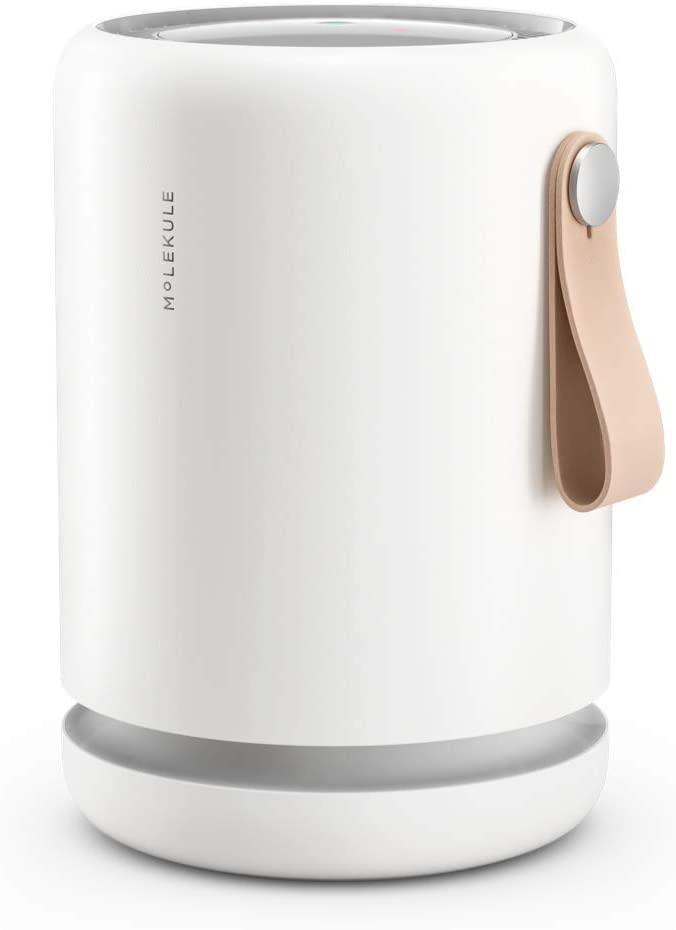 travel air purifier