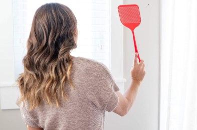 fly swatter, best fly swatters