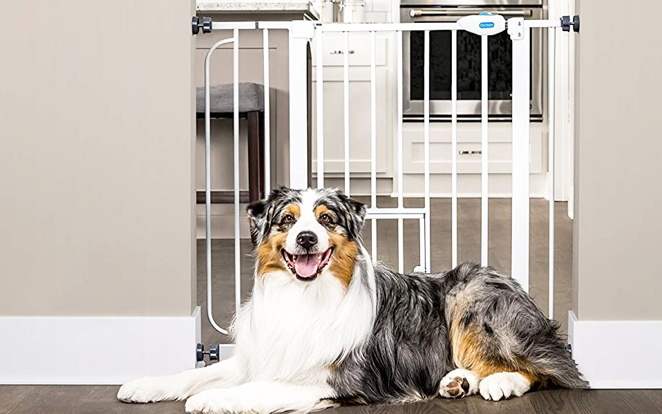 Pet Safety gate