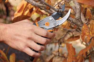 Pruning-Shears-Featured-Image