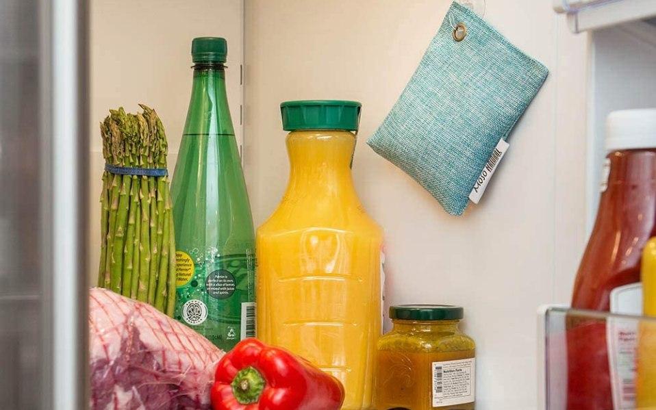 best Refrigerator Deodorizer