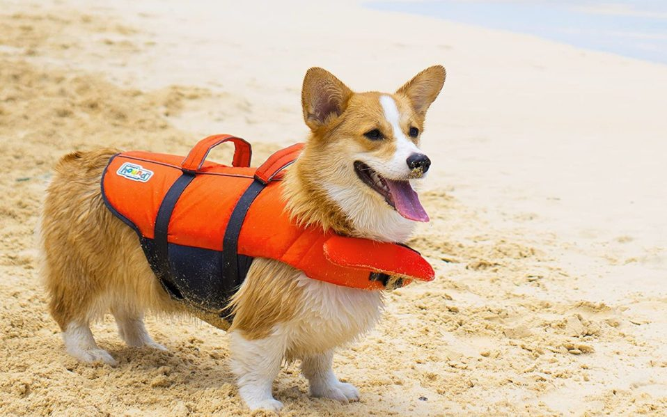 best life jackets for dogs