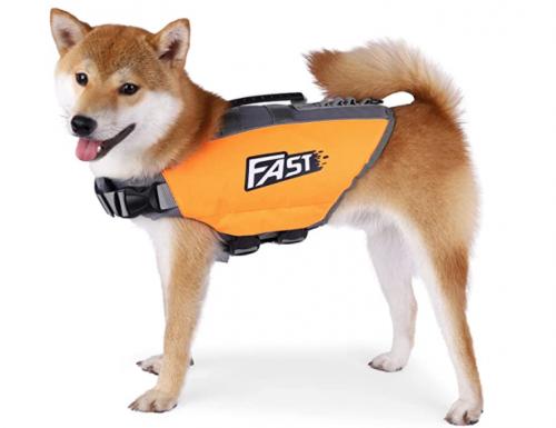 Heywean Dog life jacket