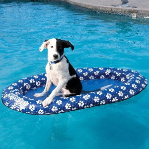 SwimWays paws dog pool float, best pool floats