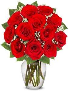 long stemmed red roses bouquet (one dozen), flower delivery services