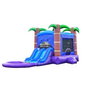 Enchanted Bounce Water slide, adult water slide, inflatable water slide for adults