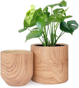 Homenote Natural Wood Ceramic Planter, how to take care of plants