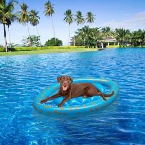 best pool float pawchie dog pool raft