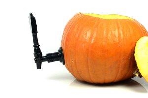 pumpkin keg piece, how to make a watermelon keg