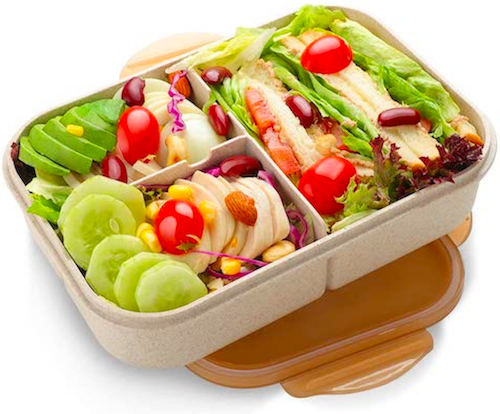 sustinable leakproof bento box