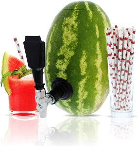 watermelon keg tap kit