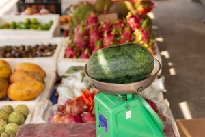 Watermelon on Scale, how to make a watermelon keg