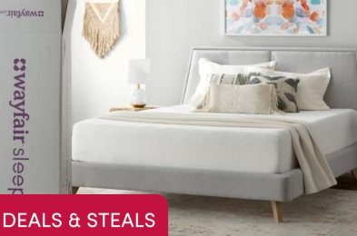 wayfair-sale